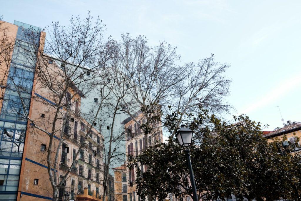 cosa vedere a Madrid in 3 giorni: La Latina