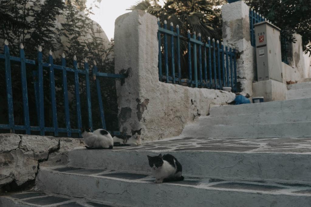Cose da vedere sull'isola di Naxos